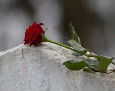 Daan (19) omgekomen door ongeval Breezand