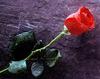 Aangereden politieman Mario (36) overleden