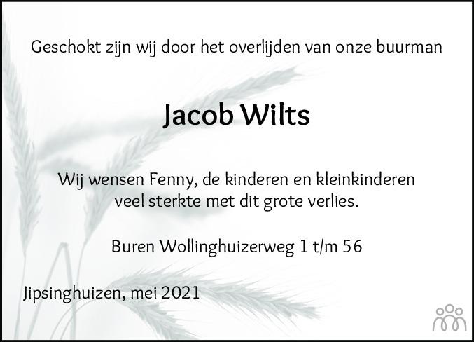 Overlijdensbericht van Jacob (Job) Wilts in Kanaalstreek Ter Apeler Courant