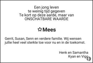 advertentie van Mees Ponstein