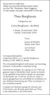 advertentie van Theo   Borghouts